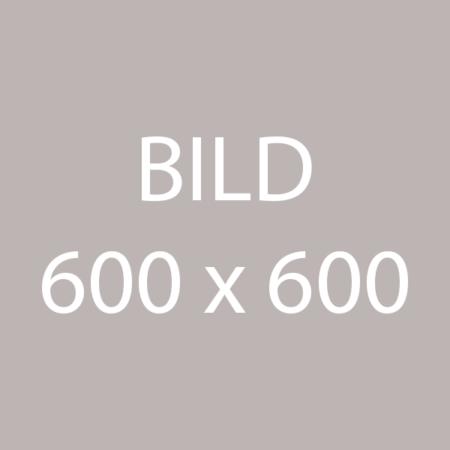 Platzhalter Bild 600x600 grau